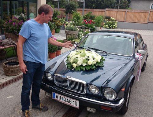 Verkauft!!! Daimler Double Six (x300, 6.0l) LWB, Jaguar XKR Cabrio, 2x Jaguar XJ12