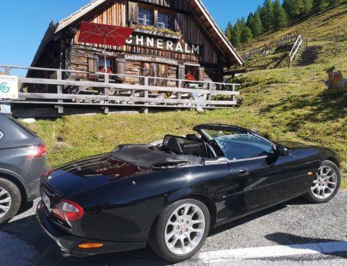 Jaguar went South!